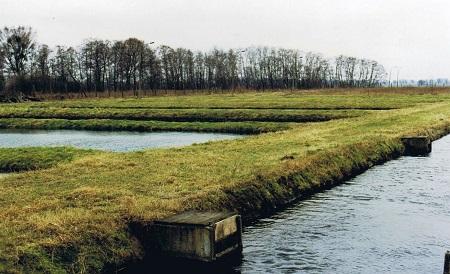 Teich Kaufen seen bei berlin see teich angelteich fischgewässer kaufen und
