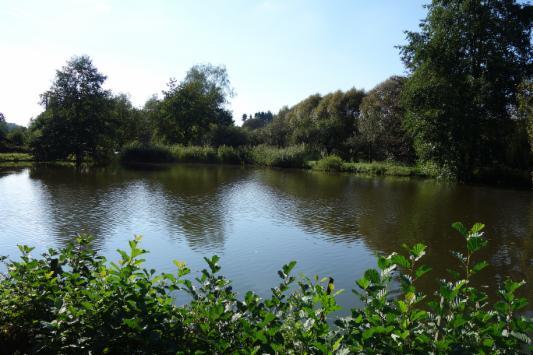 Teiche mit ferienhaus see teich angelteich for Fischhaltung im teich